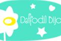 Daffodil Bijoux